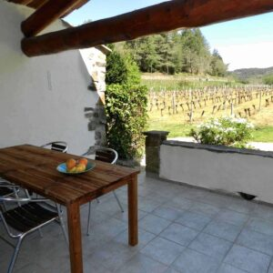 Upper terrace of Clède holiday home with vineyard view