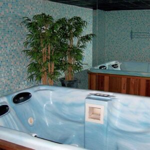 Jacuzzi (hot tub, whirlpool)
