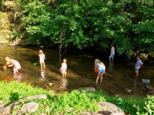 Children catching fish in the river